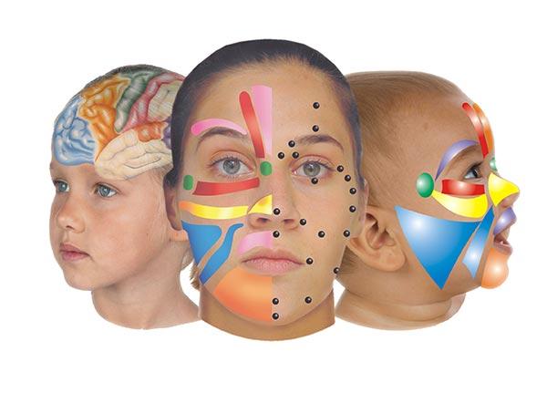 Reflexología facial del Sistema Lone Sorensen