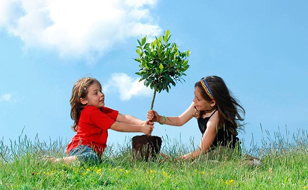 Dos niñas plantando un árbol