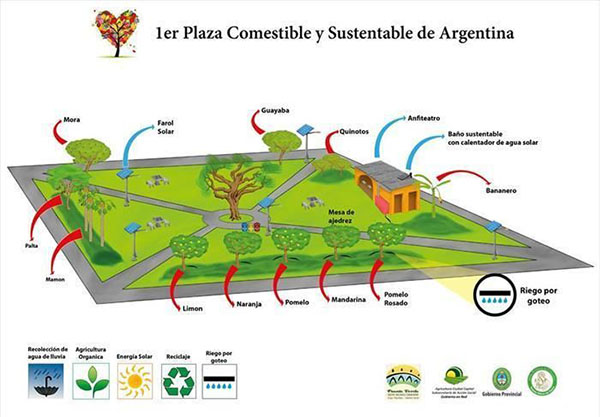 Primer plaza en Corrientes comestible y sustentable